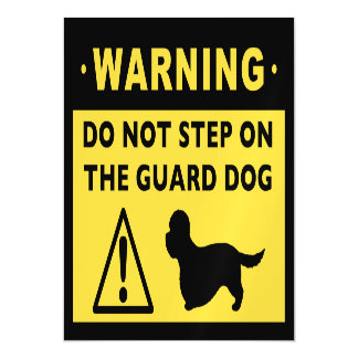 Dandie Dinmont Terrier Funny Guard Dog Warning Magnetic Card