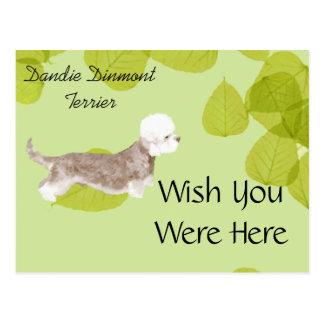 Dandie Dinmont Terrier ~ Green Leaves Design Postcard