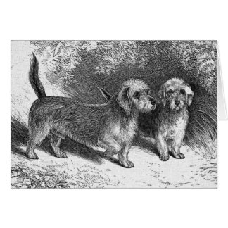 Dandie Dinmonts Vintage Dog Illustration Card