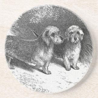 Dandie Dinmonts Vintage Dog Illustration Sandstone Coaster