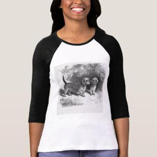 Dandie Dinmonts Vintage Dog Illustration T Shirt