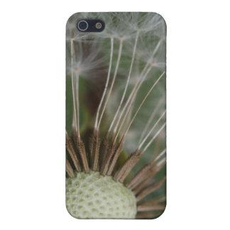 dandoleon case iPhone 5 cover