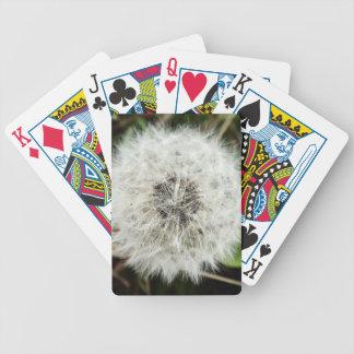 Dandy Card Decks
