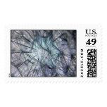 Dandylion Stamps