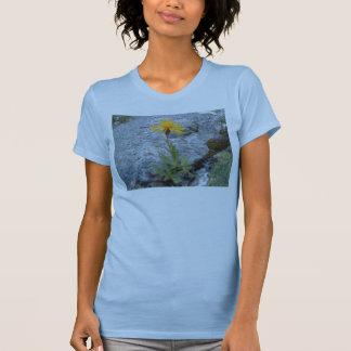 Dandylion Tee Shirt