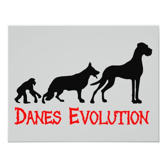 Danes Evolution Card