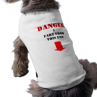 danger I fart Tee