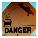 DANGER LOW FLYING AIRPLANES POSTER
