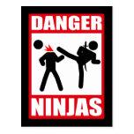 Danger Ninjas Postcard