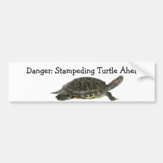 Danger:Stampeding Turtle! Car Bumper Sticker