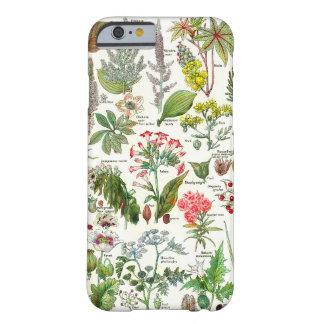 Dangereus botánico de las plantas de los funda de iPhone 6 barely there