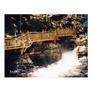 Dangerous Path Postcard