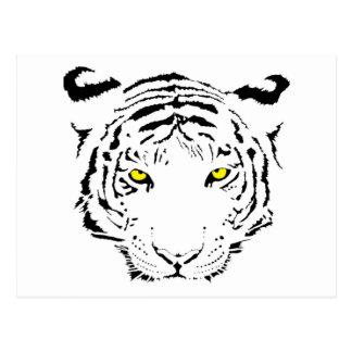 Dangerous, scary yellow eyes Tiger Postcard