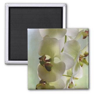Dangling Orchids Magnet Magnet
