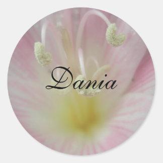 Dania Pegatina Redonda