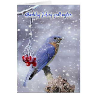 danish christmas card - blue bird with berries and