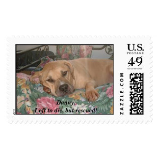 Danny:Left to die, but rescued!  Stamp