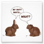 Daños del extremo de los conejos de conejito de pa impresiones fotograficas