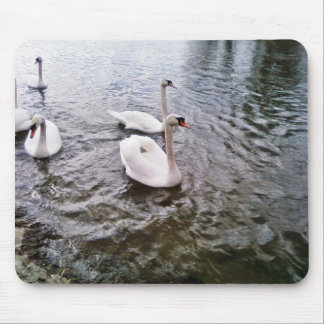 Danube Birds Swans Mouse Pad
