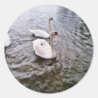 Danube Birds Swans Round Stickers