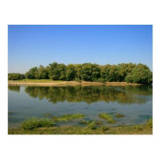 Danube River island Postcard