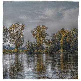 Danubio en Straubing/Baviera Servilletas De Papel