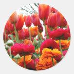 Danza de la amapola del tulipán pegatina redonda
