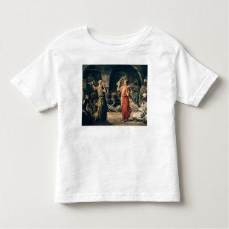 Danza de los pañuelos, 1849 remeras