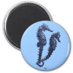 Danza de los Seahorses (azules) Iman De Frigorífico