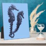 Danza de los Seahorses (azules) Placa De Madera