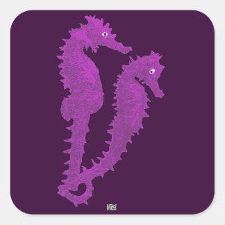 Danza de los Seahorses (púrpuras) Pegatinas