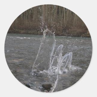 Danza del agua pegatina redonda