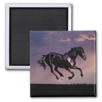 Danza del caballo en la puesta del sol imán cuadrado