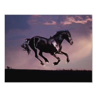 """Danza del caballo en la puesta del sol invitación 4.25"""" x 5.5"""""""
