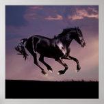 Danza del caballo en la puesta del sol poster