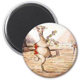 Danza del camello imán redondo 5 cm
