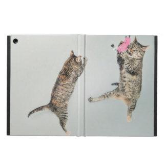 Danza del gatito