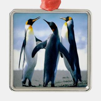 Danza del pingüino adorno navideño cuadrado de metal