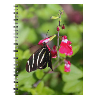 Danza desviada spiral notebooks