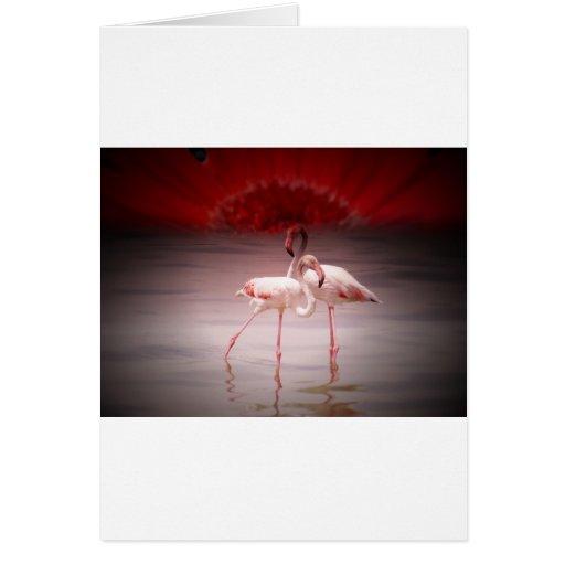 Danza rosada del flamenco tarjeta de felicitación