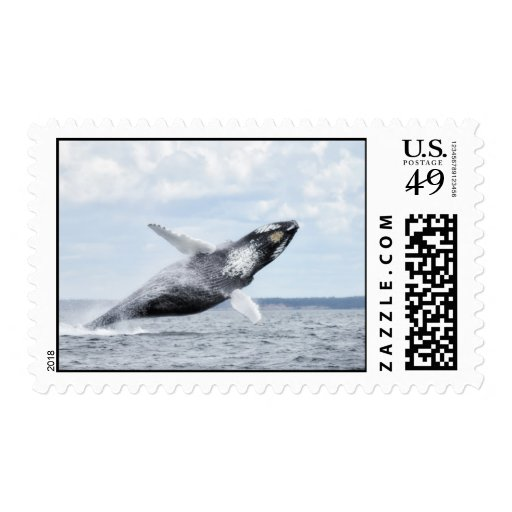 Danzas con las ballenas ningunos 8 estampillas
