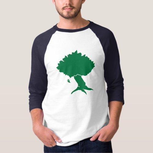 DAoC Hibernia _ Mens Raglan T_Shirt