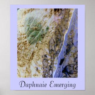 Daphnaie Emerging Poster