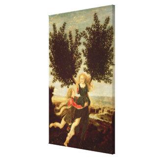 Daphne and Apollo, c.1470-80 Canvas Print