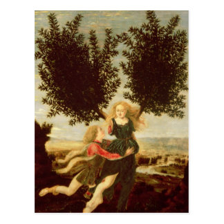 Daphne and Apollo c 1470-80 Post Cards