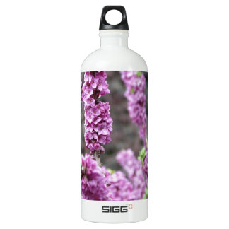 Daphne Blossoms Water Bottle