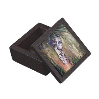 Daphne Snake Premium Gift Box