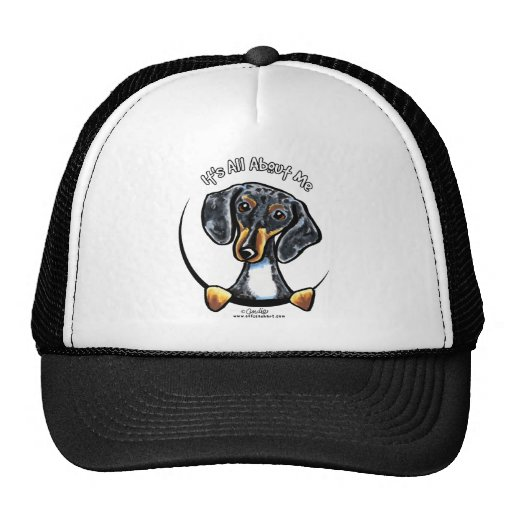 Dapple Dachshund Its All About Me Trucker Hat