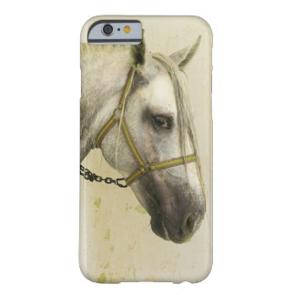 Dapple Gray Andalusian Horse Barely There iPhone 6 Case
