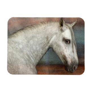Dapple Gray Andalusian Horse Portrait Rectangular Photo Magnet